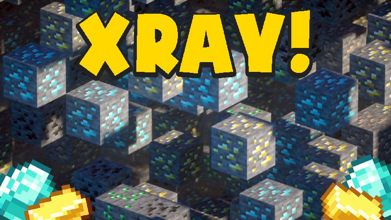XRAY on the Minecraft Marketplace by Chunklabs
